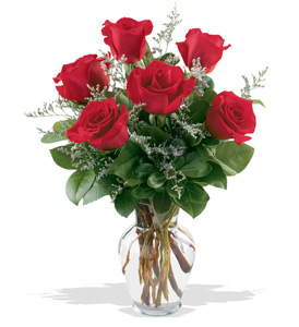 Splendid 6 Red Roses